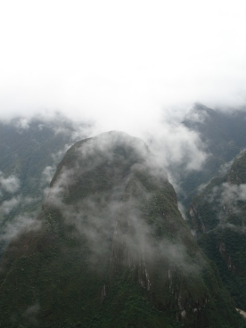Cloud forest--aptly named
