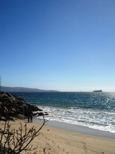 beach in Viña del Mar